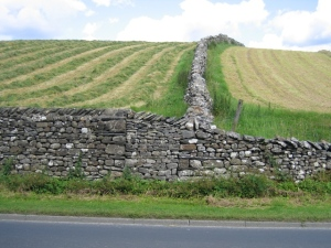 Stone_Walls_and_Hay_Fields_-_geograph.org.uk_-_525471